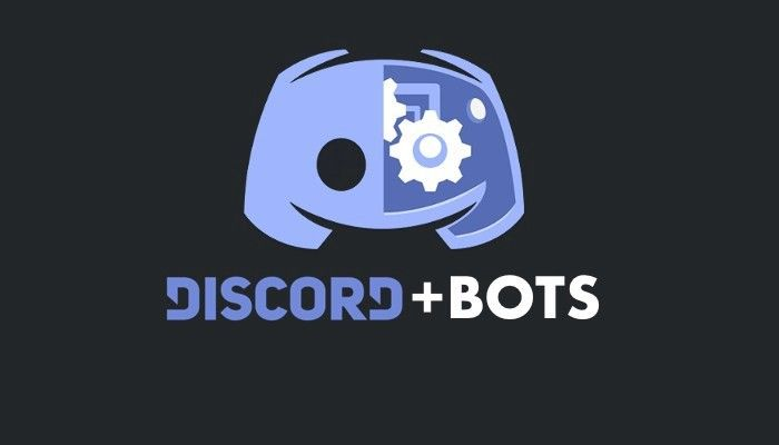 Picture of How to Add an Interactive Bot in Discord