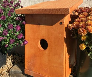 House Finch Birdhouse