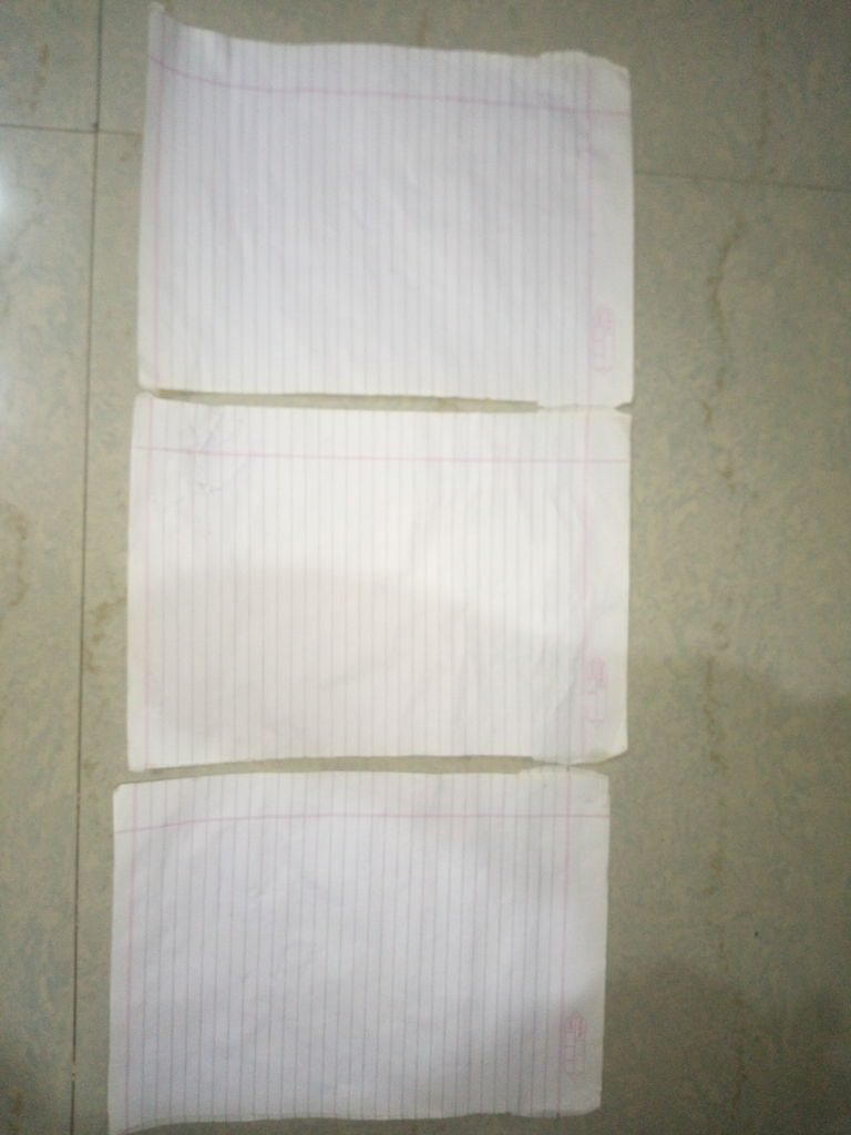 Picture of 1.   Sticking the Papers...