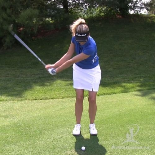 Picture of Begin Swing