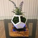 磁悬浮花盆