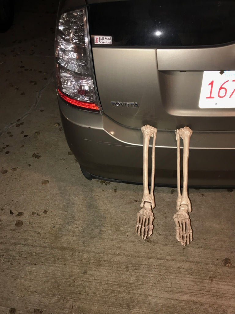 Picture of Skeleton in the Trunk - Car Decoration