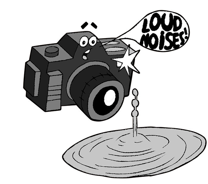 Picture of Sound Activated Camera Trigger for High Speed Photography