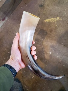 Buy a Horn - It's the Size That Counts