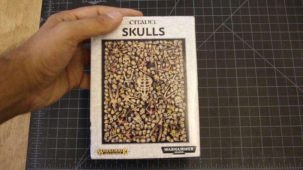 Picture of Preparing the Skulls