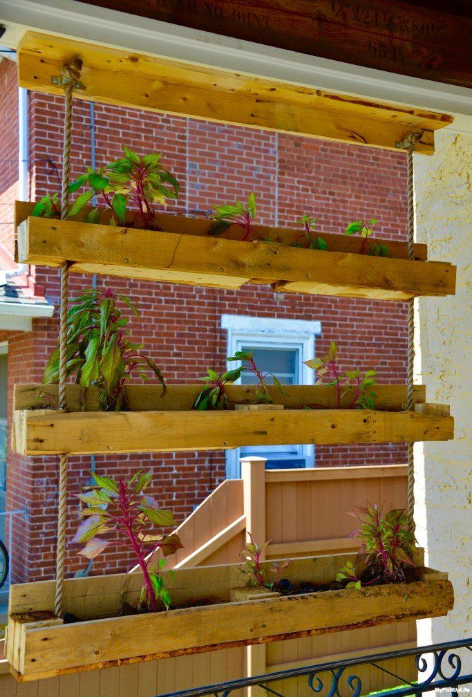 Picture of Pallet Project Inspired! Making the Hanging Gardens of Pallet-On Planter