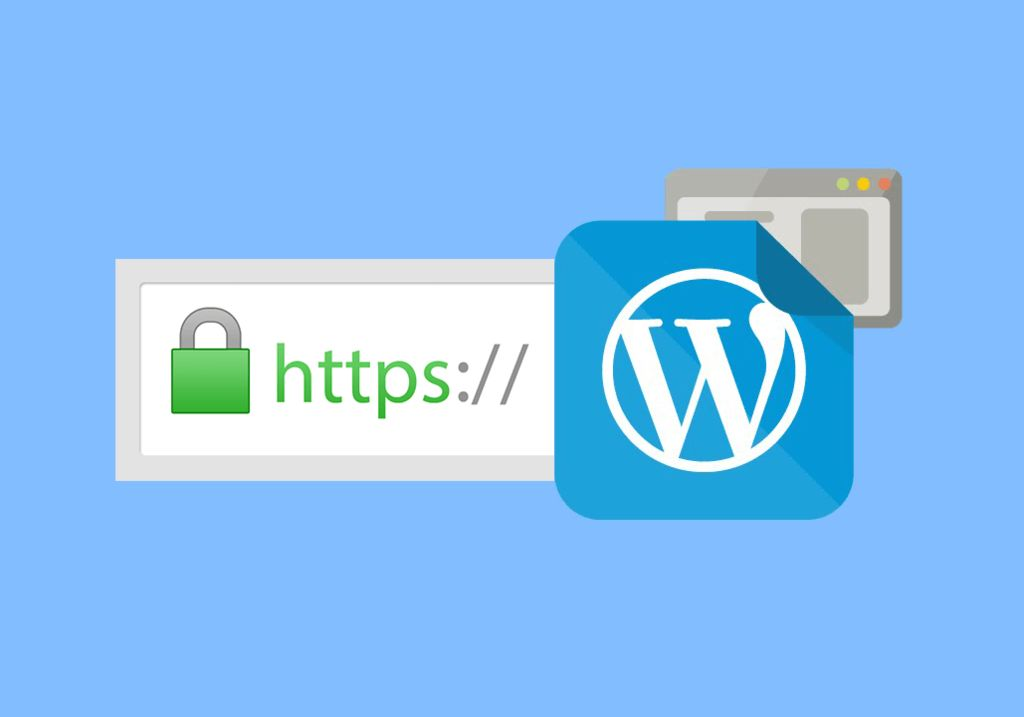 Picture of How to Install SSL Certificate on WordPress Website