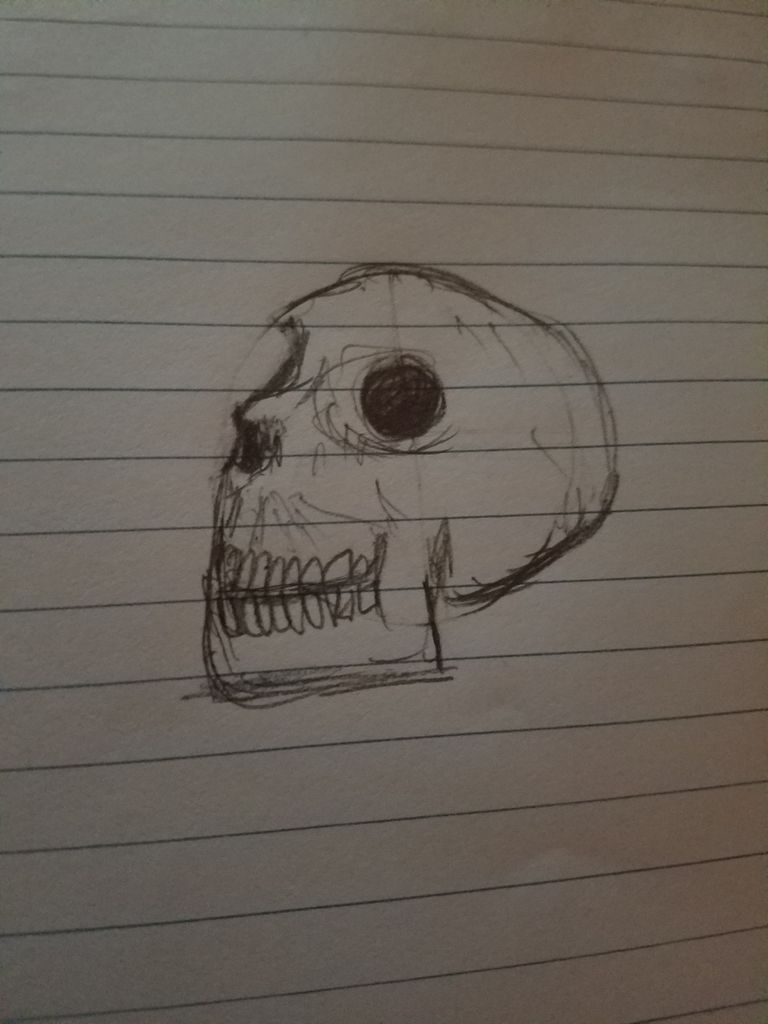 Picture of How to Draw a Skull