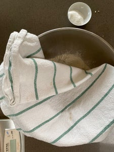 Dough - Proofing Yeast