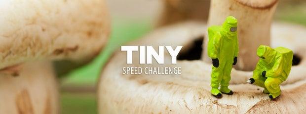 Tiny Speed Challenge