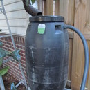 Step 0: How to Make a Rain Barrel From a Pickle Barrel