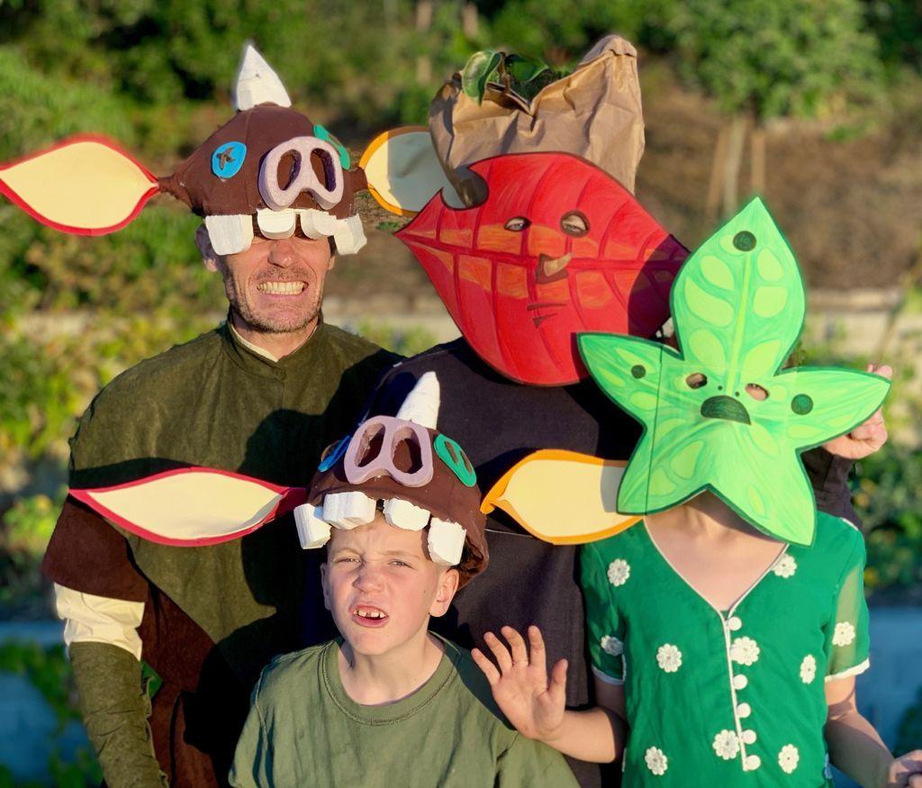 Picture of Family Legend of Zelda Halloween Costume