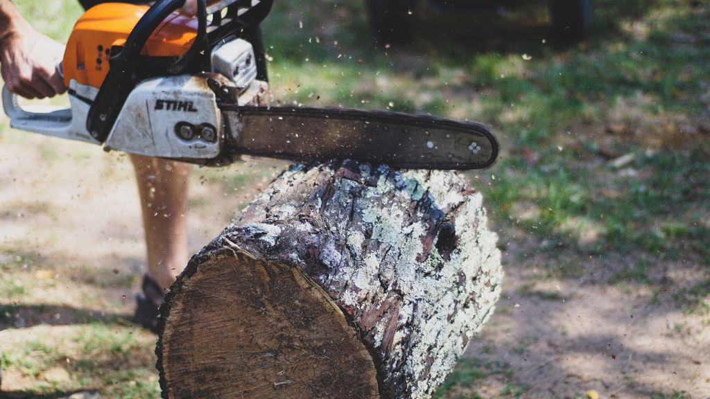 Picture of Cutting the Log to Form the Seat