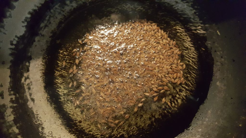 Picture of FOR RAJASTHANI GATTA CURRY ;