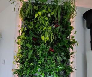 室内绿色壁