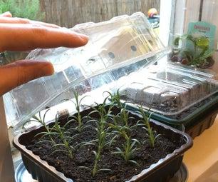 室内种子传播者 - 由回收的水果和素食托盘和汽水罐