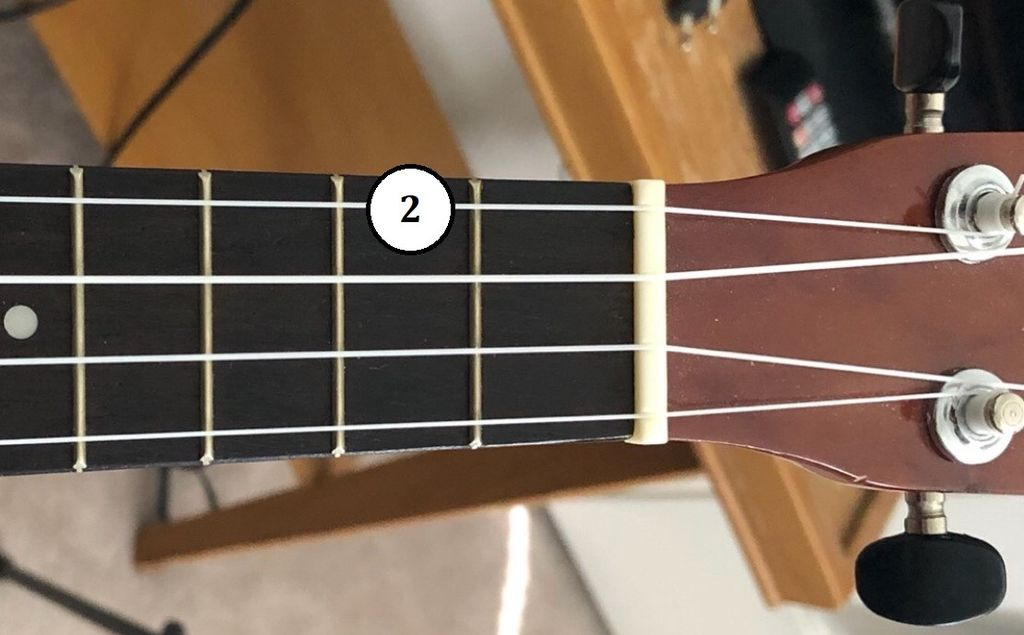 Picture of Learn About Chord Diagrams
