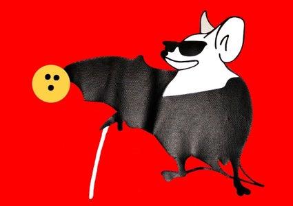 Skittles Ball Return for Swindon Bats - a Shelf That HAS to Slope!