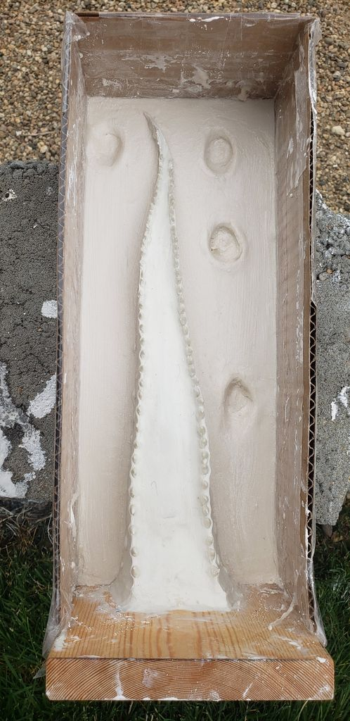 Picture of CASTING YOUR TENTACLE