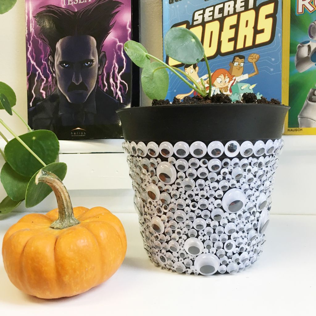 Picture of Googly Eyes Planter