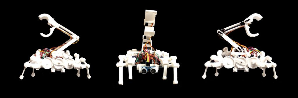 Picture of BUGS the Educational Robot