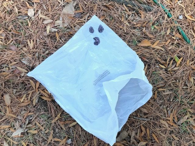 Picture of Draw on a Ghost Face