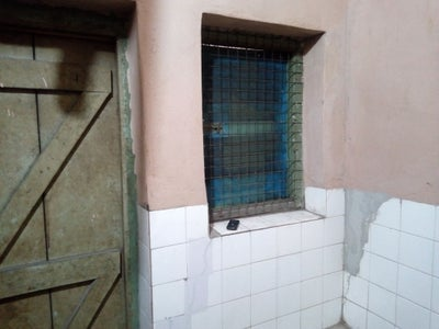 Windows and Curtain