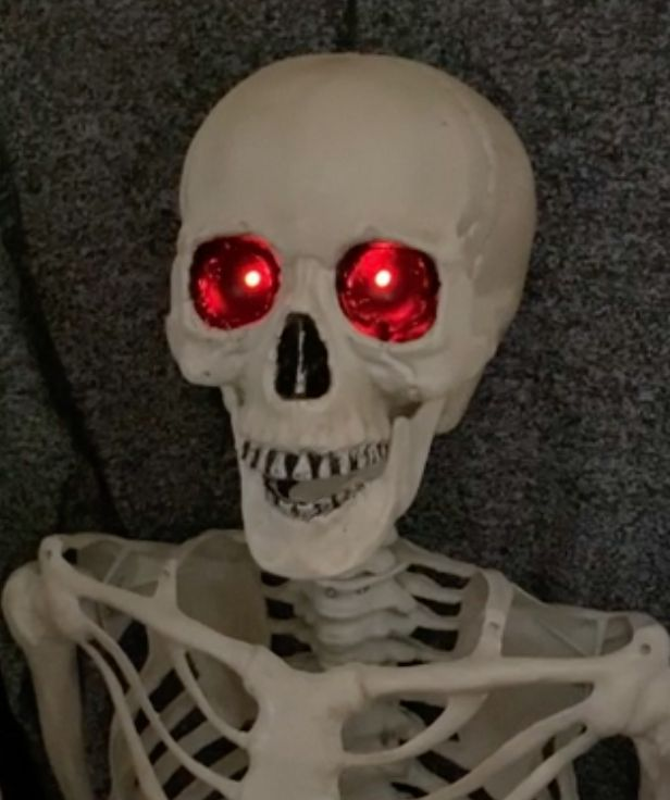 Picture of Skeleton With Dimming Red Eyes