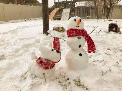 Deploying Under a Snowman
