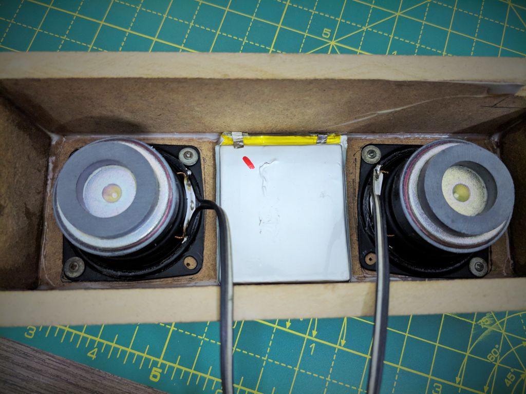 Picture of Mounting the Speaker Driver and Passive Radiator and Electronic: