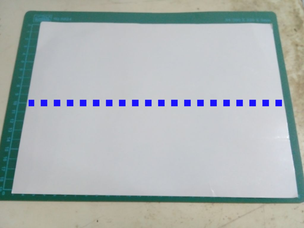 Picture of Divide the Carton Into Two Parts