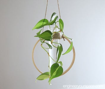 DIY试管植物繁殖站 - 母亲节礼物