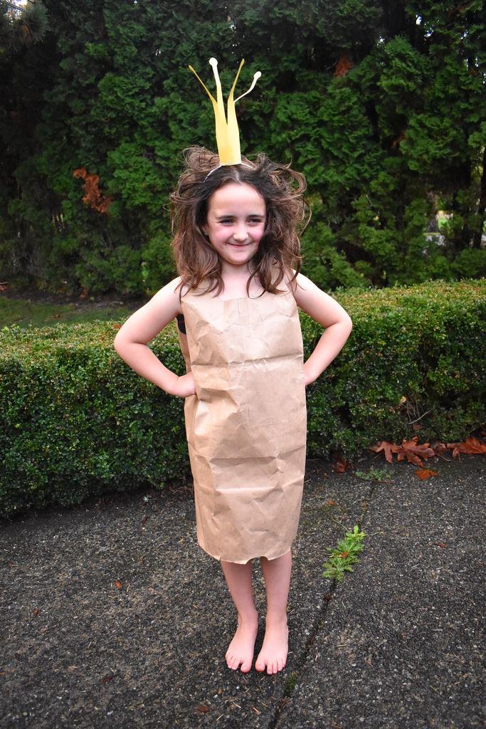 Picture of Paper Bag Princess