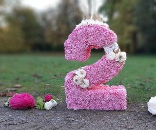 Birthday Number Pinata