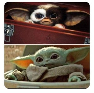 Baby Yoda Looks Sorta Familiar...