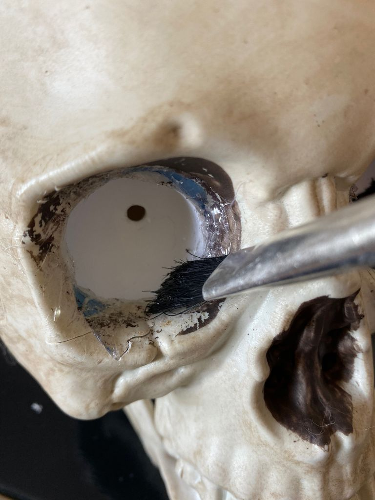 Picture of Paint Eye Sockets