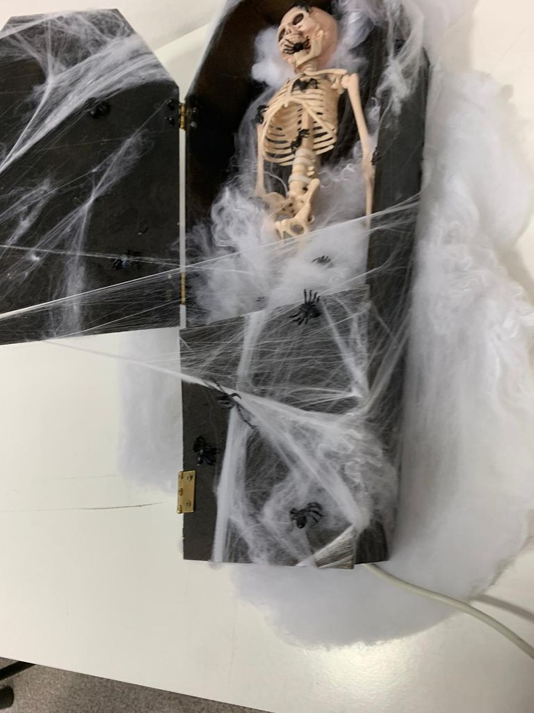 Picture of THE LIVE SKELETON