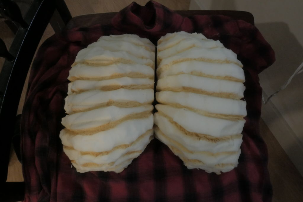 Picture of Chest/back Pieces