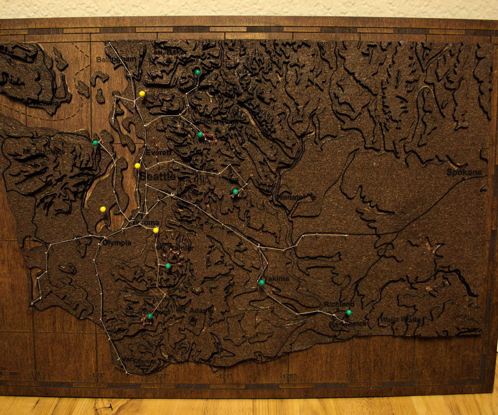 Topographical Push Pin Map