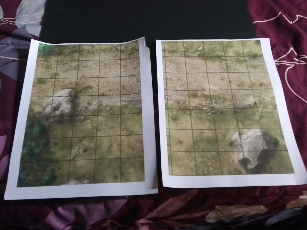 Picture of The Map