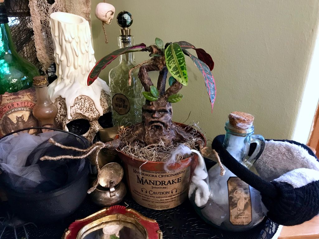 Picture of Harry Potter Mandrake Plant Prop
