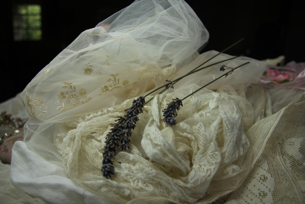 Picture of Designing the Basic Dress & Ideas on Embellishments