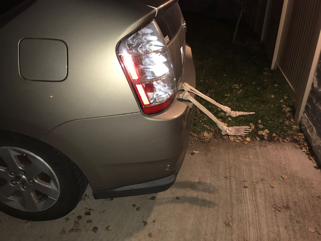 Picture of Install Your Skeleton Legs in the Trunk