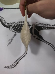 Starting With the Armature
