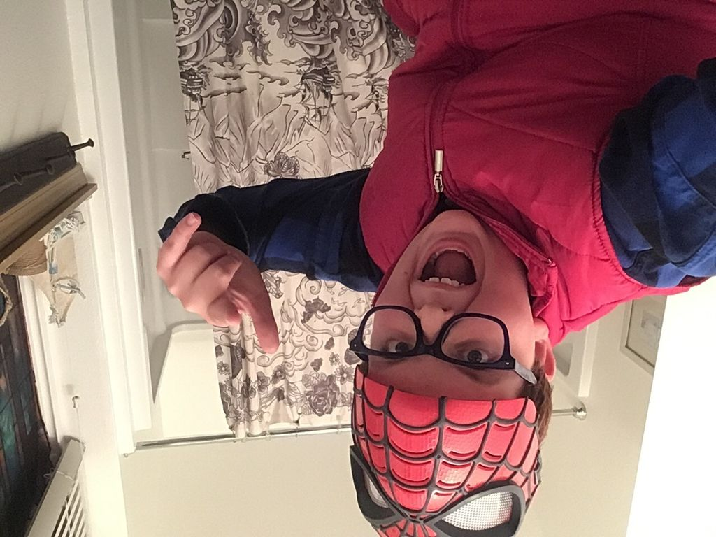 Picture of DIY SpiderMan Costume!