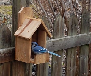 One Board Birdhouse/Feeder