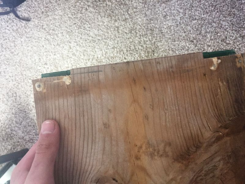 Picture of Adding the Hinges