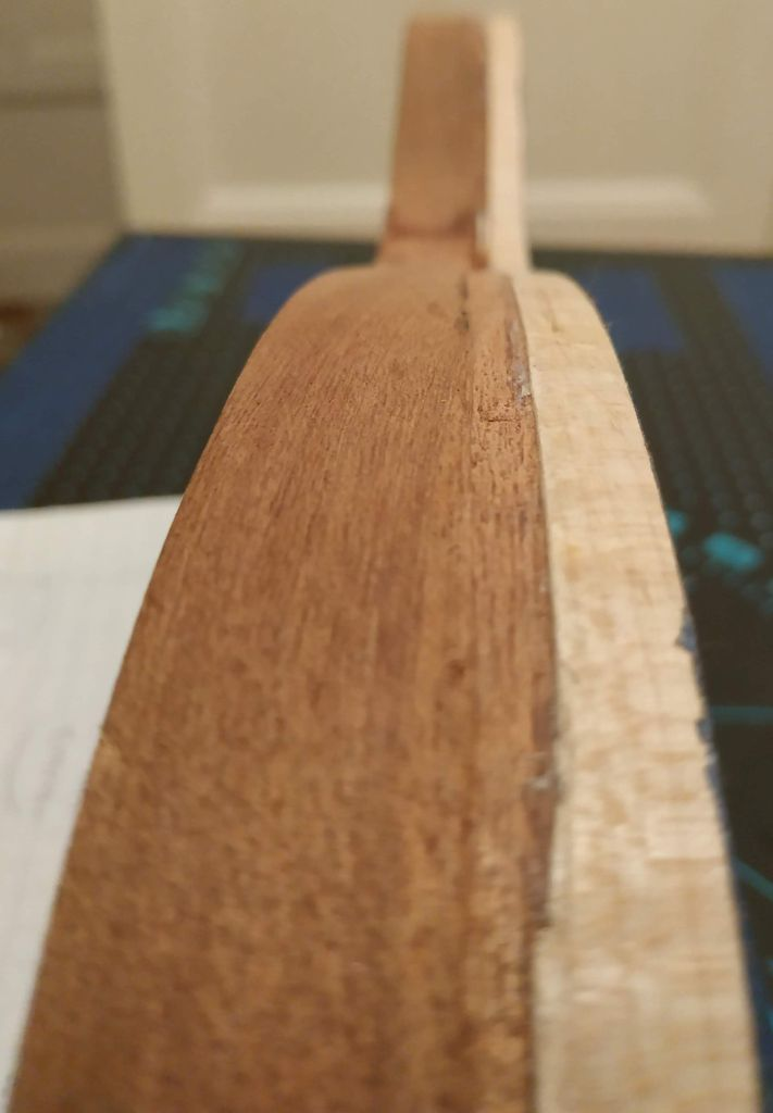 Picture of The Binding