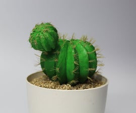 How to Make Barrel Cactus