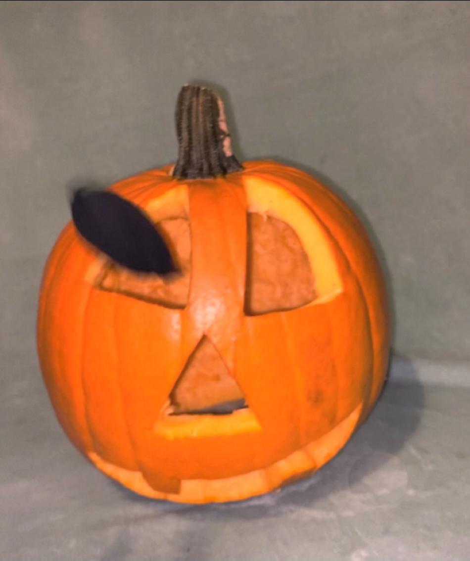 The Pumpkin Bean Bag Toss Game